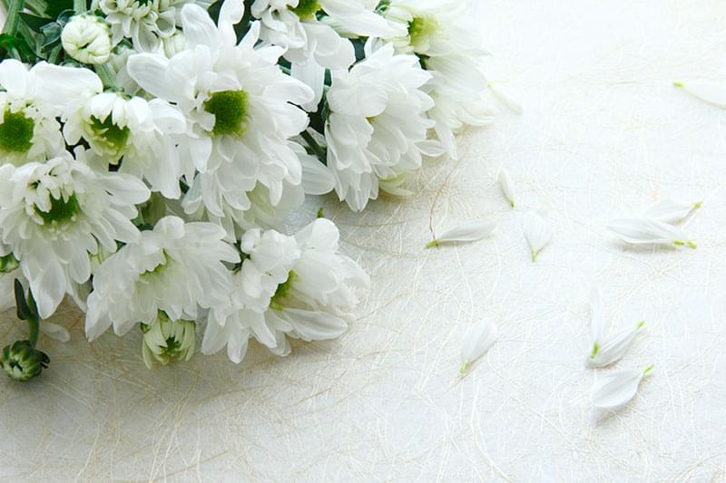 Types of Flowers to Include in a Funeral Arrangement
